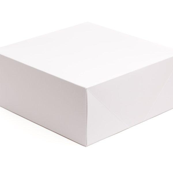 quadradas1